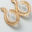 Vintage earrings female geometric Cshaped diamond earrings fashion street shooting acrylic personality earrings NHLN200344