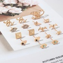 Fashion Exaggerated Alloy Animal Stud Earrings Fashion MultiElement Snake Earring Set NHNZ200419