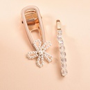 Korean new fashion pearl hairpin set crystal flower cheap hairpin wholesale NHMD209201