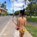 New fashion bikini sexy hot spring split threepoint swimsuit NHHL213051