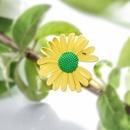 New simple cute little daisy fashion cheap hairpin wholesale NHPP207227