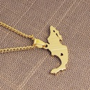 New Fashion Map Shape Pendant Necklace Clavicle Chain Simple Mexico Map Sweater Chain Necklace NHMO207889
