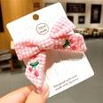 NHSA689599-Pink-cherry