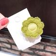 NHNA699526-6--Light-green-flower