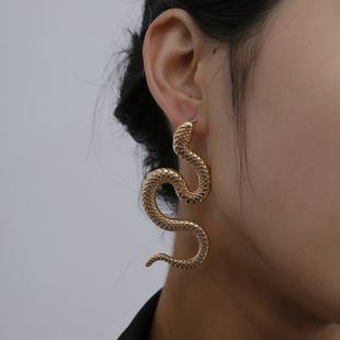 Twisted geometric hip hop earrings nihaojewelry wholesale exaggerated serpentine fashion relief long earrings NHXR213635's discount tags