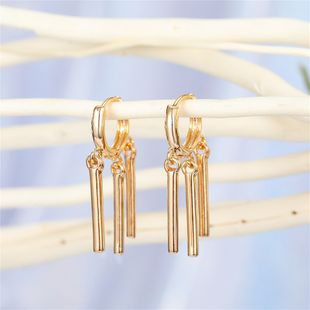 minimalist personality geometric stripe tassel earrings multi-layer vertical strip ear ring ear buckle wholesale nihaojewelry NHGO221020's discount tags
