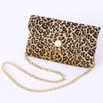 NHPO724085-Leopard-chain-bag