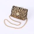 NHPO724086-Leopard-chain-small-bag