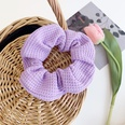 NHOF733468-Waffle-purple