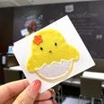 NHSA740215-Little-yellow-duck