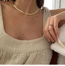 Korean simple choker snake bone short necklace flat necklace neck jewelry wholesale nihaojewelry NHYQ227619