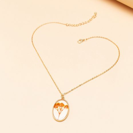 fashion jewelry new dried flower acrylic pendant clavicle chain temperament flower necklace wholesale nihaojewelry NHNZ223335's discount tags