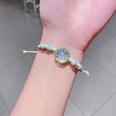 NHNA802547-16-Blue-dried-flower-glass-ball-(Series-4)