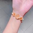 NHNA802555-24-Orange-Dried-Flower-Glass-Ball-(Series-5)