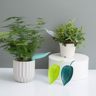 Creative Potted Leaf Type Diversion Watering Funnel Plant Drainage Waterer wholesale nihaojewelry NHJA235504's discount tags