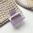 NHOF818296-8Jelly-purple