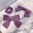 NHNA819702-Purple-hair-accessories-three-piece-set