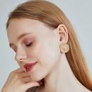 Fashion new s925 silver needle ear jewelry alloy earrings round thread earrings matte lion earrings for women nihaojewelry NHOA237158