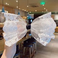 NHNA846620-1White-lace-spring-clip