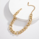 creative fashion simple single layer trendy necklace exaggerated aluminum chain necklace wholesale nihaojewelry NHXR239600