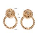 lion  retro fashion trend earrings wholesale nihaojewelry NHAI239643