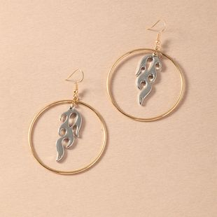 fashion personality flame pendant  simple geometric circle earrings wholesale  NHNZ240238's discount tags