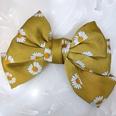 NHUX876500-Yellow-daisy
