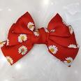 NHUX876506-Big-red-daisy
