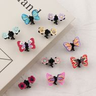 South Korea butterfly  small flower baby hairpin set NHNU243394