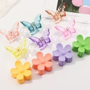 Korean catching clip big flowers big butterfly shape hairpin wholesale nihaojewelry NHNU243412