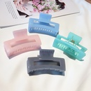 simple  elegant head hairpin ponytail shark clip wholesale nihaojewelry NHDQ243453
