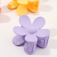 NHNU898927-Flower-purple
