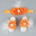 NHWO907897-Orange