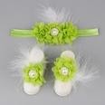 NHWO907903-Grass-green