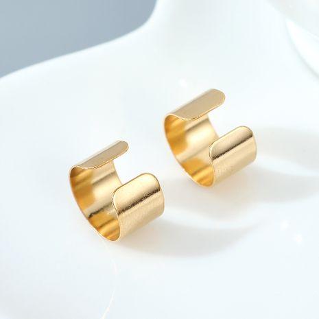 Boucle d'oreille de mode tendance personnalité sauvage de style français NHPS245438's discount tags