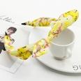 NHDP917044-Yellow-flower-9955