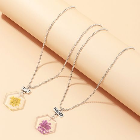 new dried flower transparent acrylic geometric resin fruit pendant necklace wholesale  NHNU246570's discount tags
