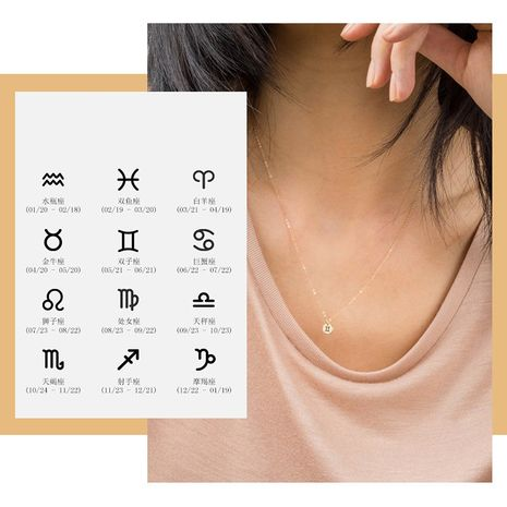 Fashion stainless steel lettering constellation clavicle chain single hole round necklace  NHTF249328's discount tags