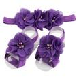 NHLI944880-Dark-purple