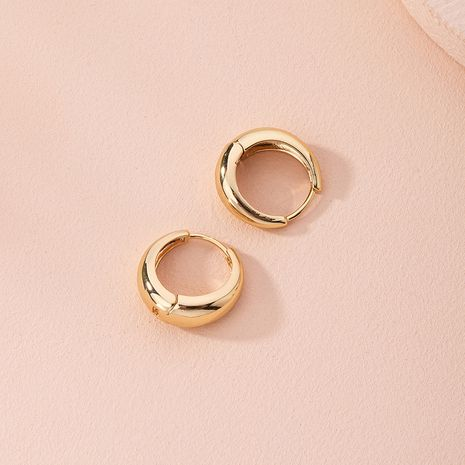 new fashion simple metal wild circle niche alloy earrings for women NHAI249639's discount tags