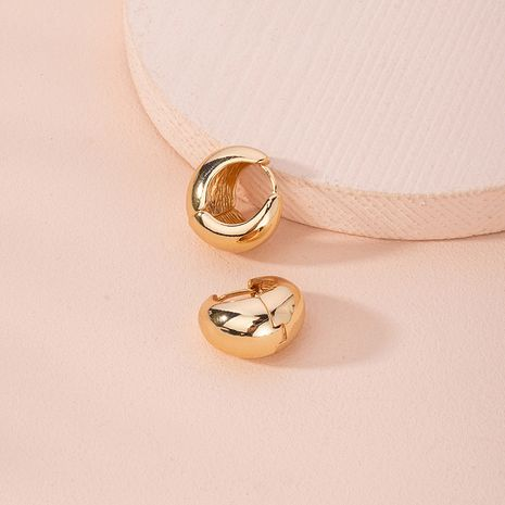 Fashion exaggerated new simple circle alloy earrings for women wholesale NHAI249647's discount tags