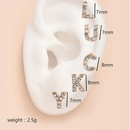 Korean fashion new womens full diamond backhanging fish bone earrings set  NHAJ249831