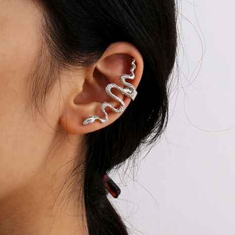 fashion simple autumn new alloy retro snake-shaped alloy ear clip for women NHXR249891's discount tags