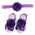 NHLI982305-Deep-purple