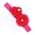 NHLI982435-Rose-red