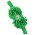 NHLI982701-Christmas-green