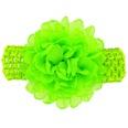 NHLI982735-Fluorescent-green
