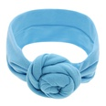 NHLI982769-blue