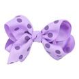 NHLI982953-purple
