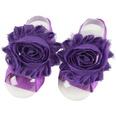 NHLI983096-purple